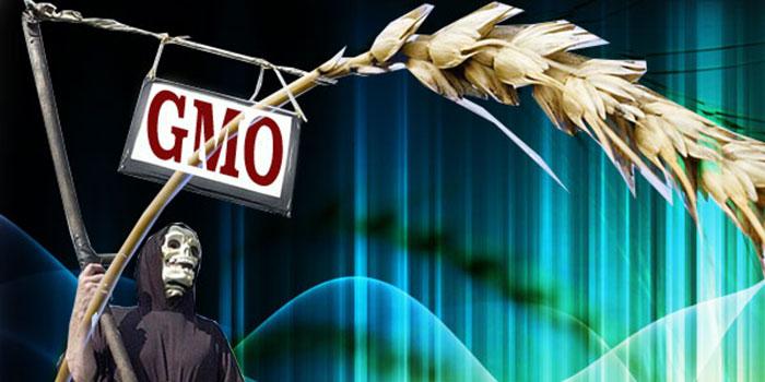 vergif GMO