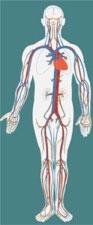 centrale bloeddruk