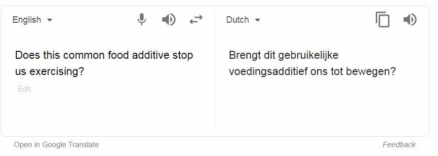 valse Google translate vertaling