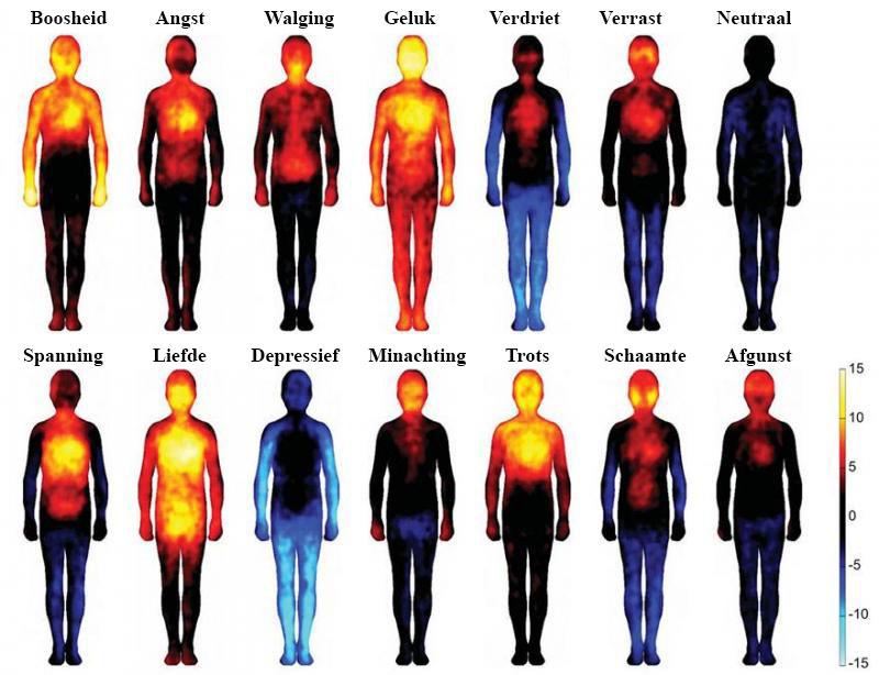 emotie onderzoek kaart
